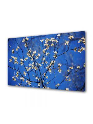 Tablou Canvas Peisaj Flori cu albastru intens