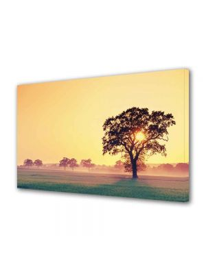 Tablou Canvas Luminos in intuneric VarioView LED Peisaj Copac cu soare