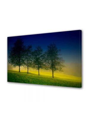 Tablou Canvas Luminos in intuneric VarioView LED Peisaj Patru Copaci