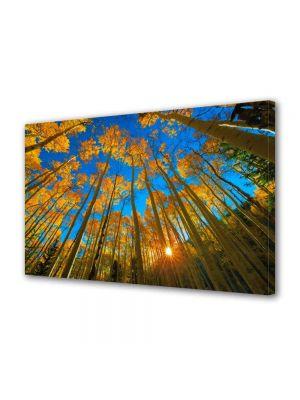 Tablou Canvas Peisaj In sus pe cer