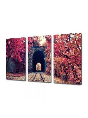 Set Tablouri Multicanvas 3 Piese Peisaj Cale ferata