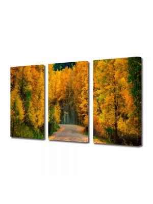 Set Tablouri Multicanvas 3 Piese Peisaj Toamna pe drum