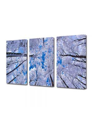 Set Tablouri Multicanvas 3 Piese Peisaj In sus iarna