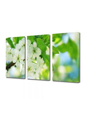 Set Tablouri Multicanvas 3 Piese Peisaj Flori inflorite