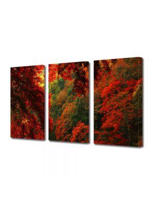 Set Tablouri Multicanvas 3 Piese Peisaj Rosu