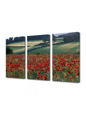 Set Tablouri Multicanvas 3 Piese Peisaj Maci la orizont
