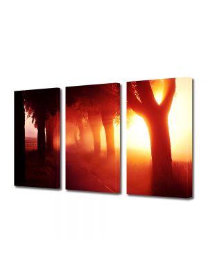 Set Tablouri Multicanvas 3 Piese Peisaj Lumina fantastica