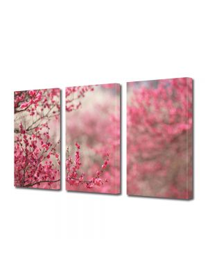 Set Tablouri Multicanvas 3 Piese Peisaj Pomi fructiferi