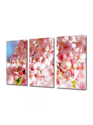 Tablou Canvas Peisaj Flori de gutui