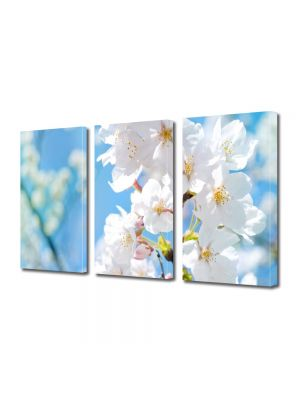 Set Tablouri Multicanvas 3 Piese Peisaj Floare cu nuante Alb-albaste