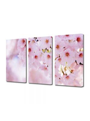 Set Tablouri Multicanvas 3 Piese Peisaj Buchet de flori roz