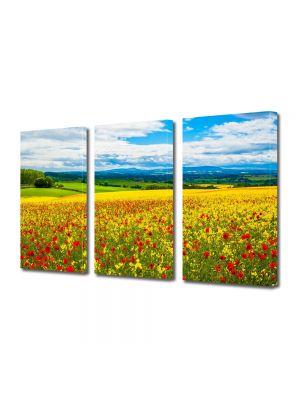Set Tablouri Multicanvas 3 Piese Peisaj De la pamant la cer