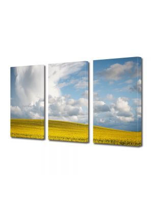 Set Tablouri Multicanvas 3 Piese Peisaj Nori frumosi