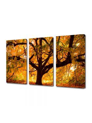 Set Tablouri Multicanvas 3 Piese Peisaj Copac vesnic