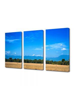 Tablou Canvas Peisaj Maro si albastru