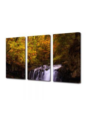 Set Tablouri Multicanvas 3 Piese Peisaj Cascada in padure