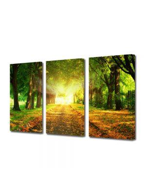 Set Tablouri Multicanvas 3 Piese Peisaj Lumini fantastice