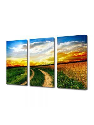Set Tablouri Multicanvas 3 Piese Peisaj Drum neasfaltat