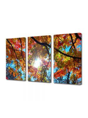 Set Tablouri Multicanvas 3 Piese Peisaj Sub cer