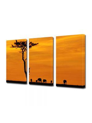 Tablou Canvas Peisaj Africa