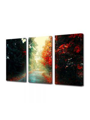 Set Tablouri Multicanvas 3 Piese Peisaj Printre copaci