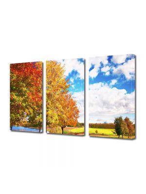 Set Tablouri Multicanvas 3 Piese Peisaj Peisaj de toamna
