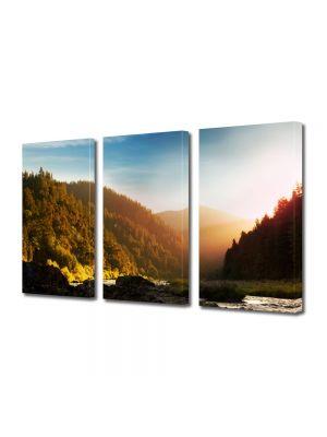 Set Tablouri Multicanvas 3 Piese Peisaj In ceata