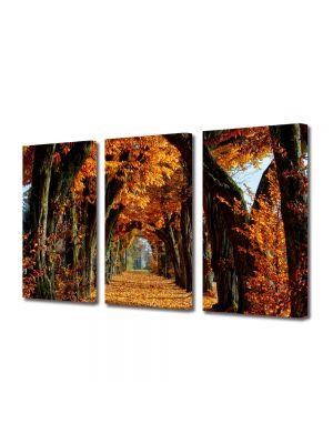 Set Tablouri Multicanvas 3 Piese Peisaj Tunel de toamna