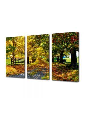 Set Tablouri Multicanvas 3 Piese Peisaj Culori de toamna