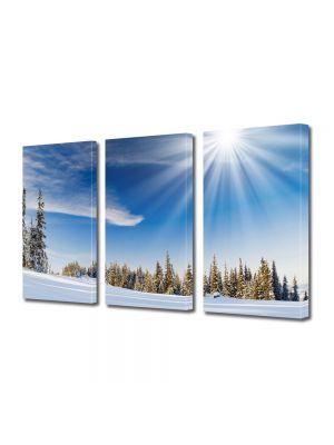 Set Tablouri Multicanvas 3 Piese Peisaj Soare cu dinti