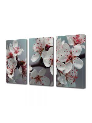 Set Tablouri Multicanvas 3 Piese Peisaj Flori albe