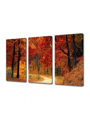 Set Tablouri Multicanvas 3 Piese Peisaj Drum in padure toamna
