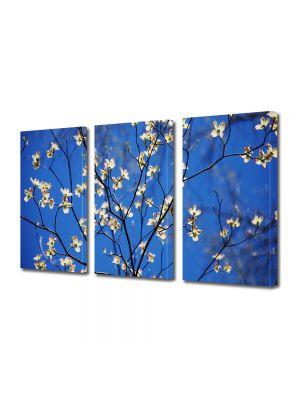 Set Tablouri Multicanvas 3 Piese Peisaj Flori cu albastru intens