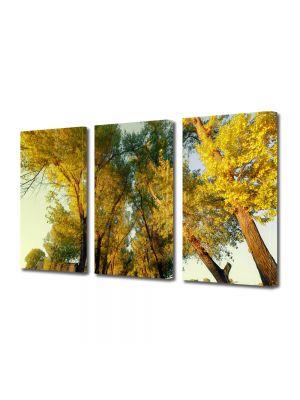 Set Tablouri Multicanvas 3 Piese Peisaj Perspectiva copaci