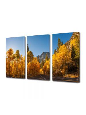 Set Tablouri Multicanvas 3 Piese Peisaj Prin Canada