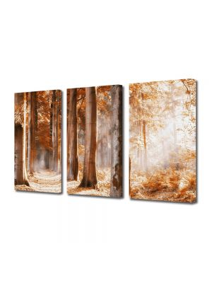 Set Tablouri Multicanvas 3 Piese Peisaj Covor rosu