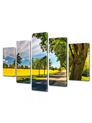 Set Tablouri Multicanvas 5 Piese Peisaj Drum umbrit
