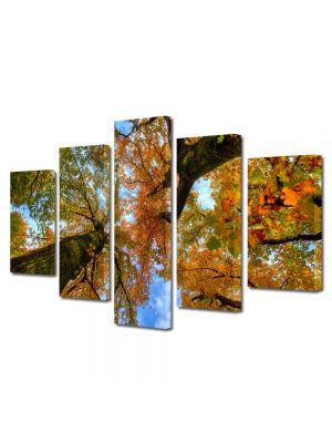 Set Tablouri Multicanvas 5 Piese Peisaj Doi copaci de jos