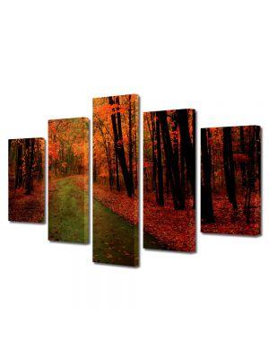 Set Tablouri Multicanvas 5 Piese Peisaj Dupa ploaie