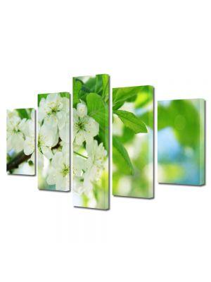 Set Tablouri Multicanvas 5 Piese Peisaj Flori inflorite