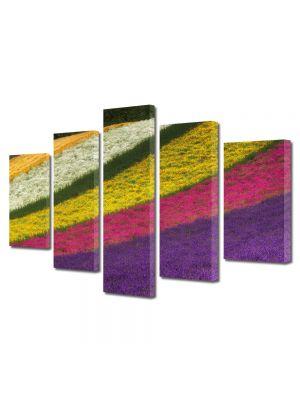 Set Tablouri Multicanvas 5 Piese Peisaj Lanuri colorate