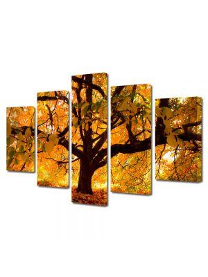 Set Tablouri Multicanvas 5 Piese Peisaj Copac vesnic