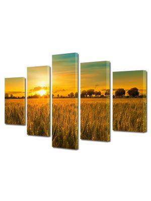 Set Tablouri Multicanvas 5 Piese Peisaj Apus in lanul de grau