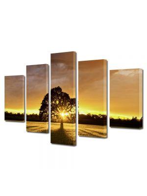 Set Tablouri Multicanvas 5 Piese Peisaj Ascuns dupa copac