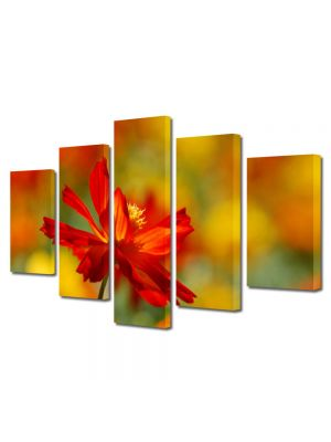 Set Tablouri Multicanvas 5 Piese Peisaj Floare singuratica