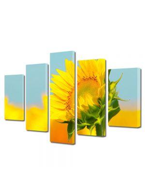 Set Tablouri Multicanvas 5 Piese Peisaj Pui de floarea soarelui
