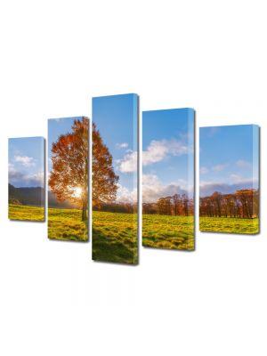 Set Tablouri Canvas 5 Piese Peisaj Dupa copac