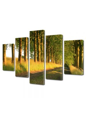 Set Tablouri Canvas 5 Piese Peisaj Copaci pe marginea drumului