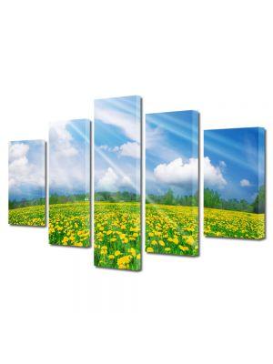 Set Tablouri Canvas 5 Piese Peisaj Rase pe campie
