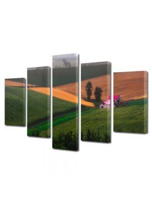 Set Tablouri Canvas 5 Piese Peisaj Casa pe campie